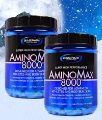 aminomax-8000